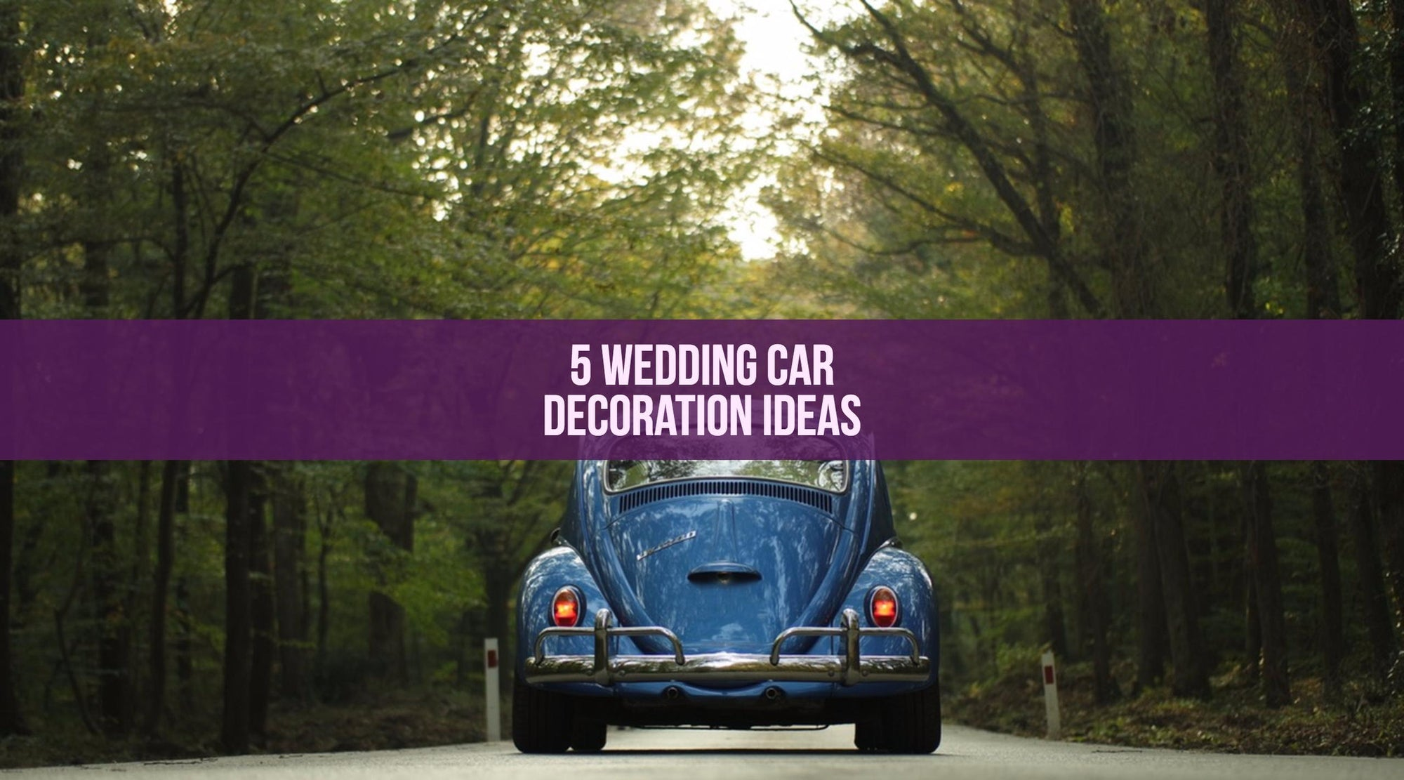 5 Wedding Car Decoration Ideas
