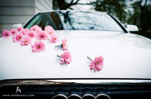 Car Flowers On Hood
