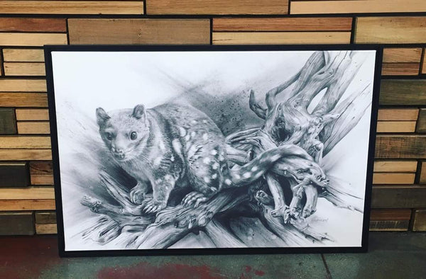 Framed Canvas 'Driftwood Thylacine' & 'Spotted Quoll'