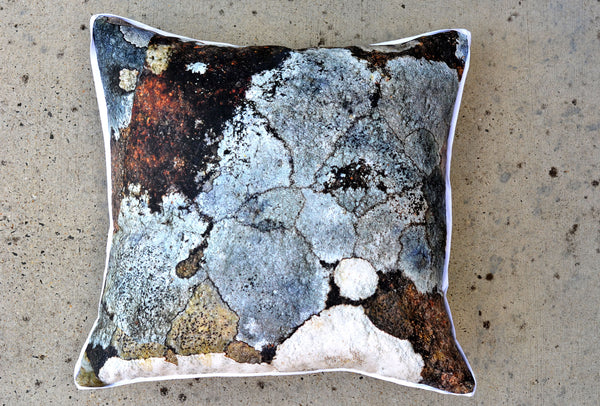Watercolour Grey Lichen Cushions