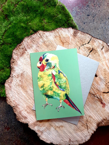 Bosa Art Co Greeting Cards