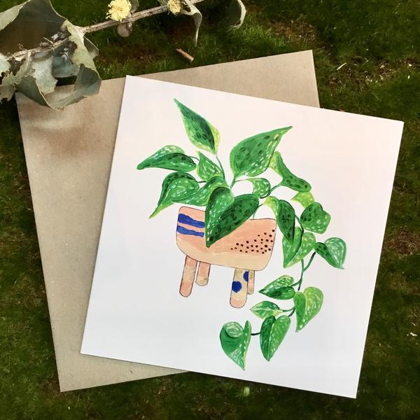Plant Lovers Gift Pack 1