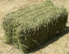 Farm Hay Small Square Bale Deposit