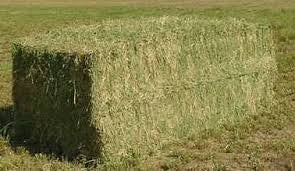 Farm Hay Large Square Bale Deposit
