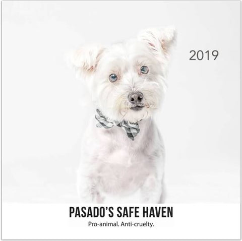 Pasado's Safe Haven Calendar-2019