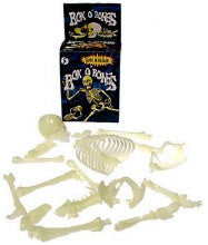 Human Skeleton Bones (16-Pieces)