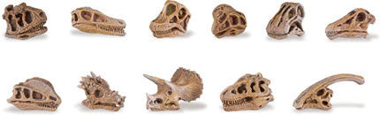 Miniature - Dinosaur Skulls (11-Pieces)
