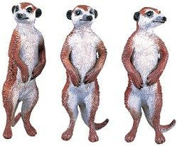 Miniature - Meerkat Siblings (Set of 3)
