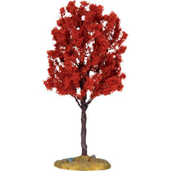 "Miniature - Bald Cypress Tree (6"")"