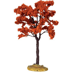 "Miniature - Yellowwood Tree (6"")"