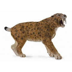 "Smilodon ""Sabre Tooth Tiger"""