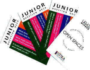Principles, Values & Beliefs 'Junior' Question Deck