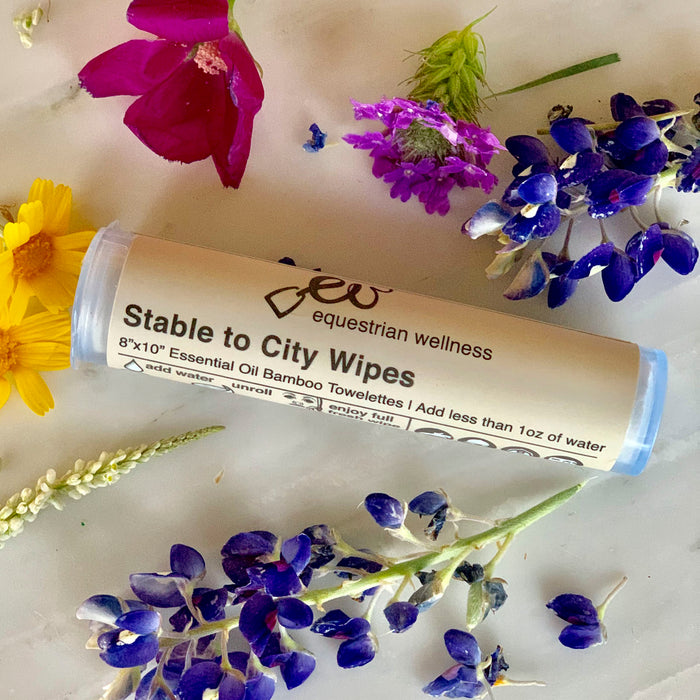 Equestrian Wellness Stable to City Wipes