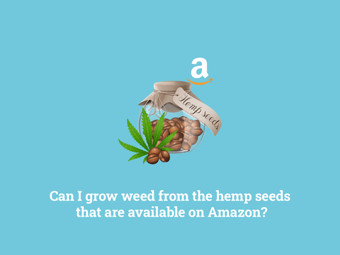 Can you grow hemp seeds from Amazon?