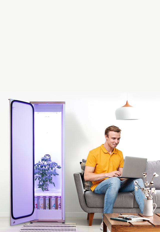Grobo Solid Grow Box in Livingroom