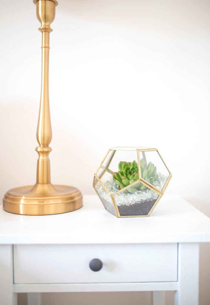 Gold Metal and Glass Terrarium