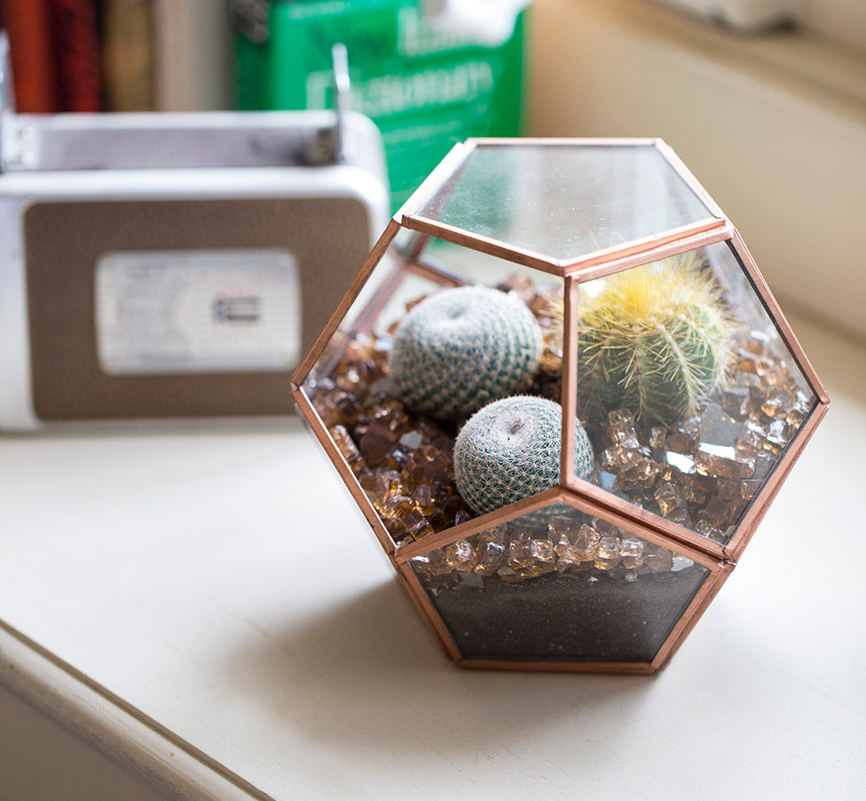 Bronze Metal and Glass Terrarium