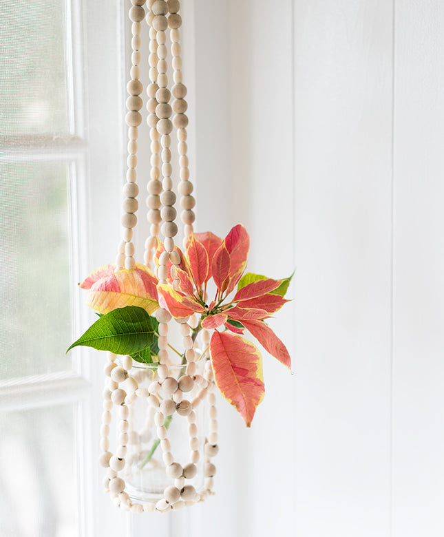 Beaded Hanging Planter