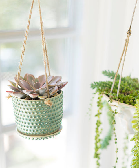 Bumpy Hanging Planter