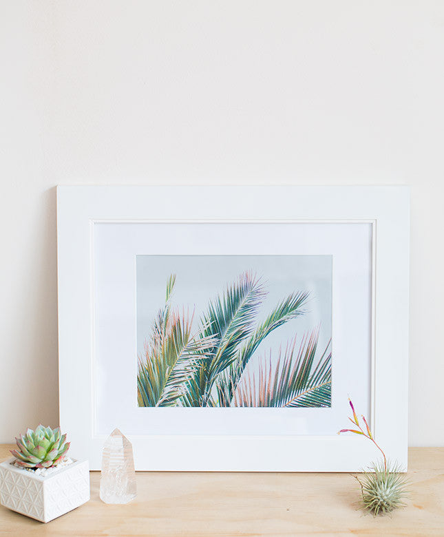 Wilder California Palm Print - Dalla Vita - 1