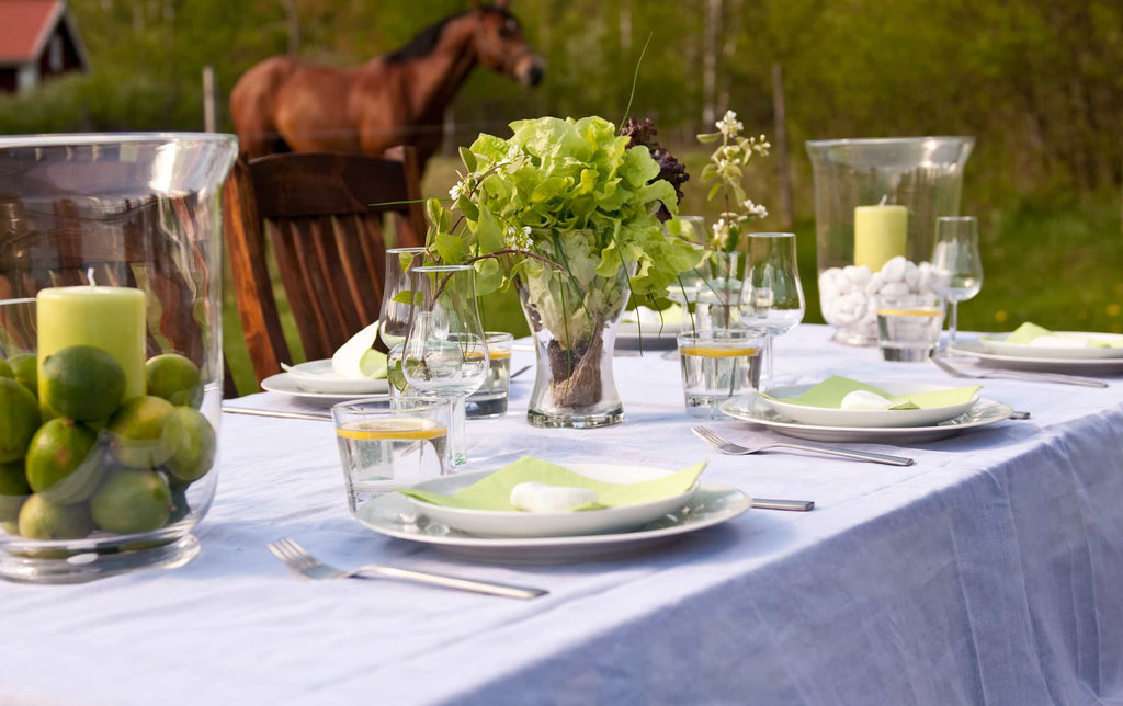 white tablescape for a summer picnic