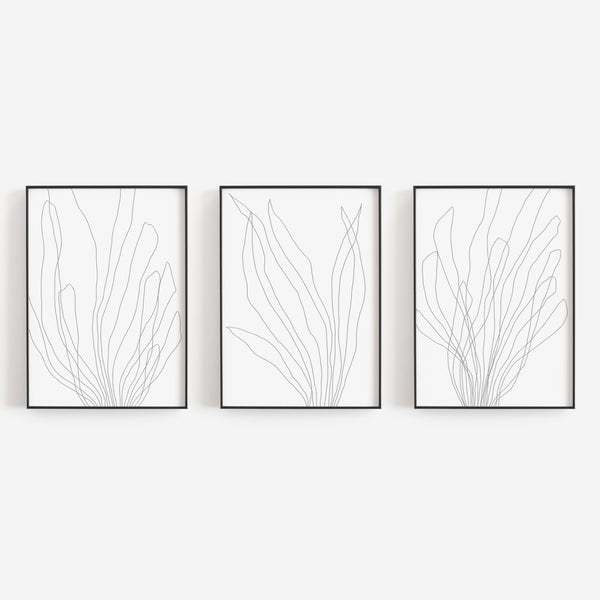Modern Minimalist Seaweed Illustration Triptych Set of 3 Wall Art Prints or Canvas - Jetty Home