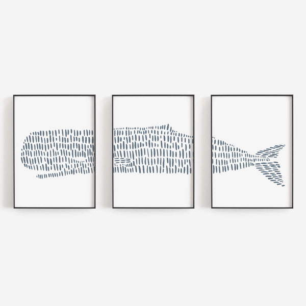 Sperm Whale Illustrated Line Triptych Set of Three Wall Art Prints or Canvas - Jetty Home