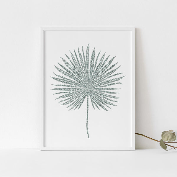 Palm Fan Frond Tropical Botanical Leaf Wall Art Print or Canvas - Jetty Home