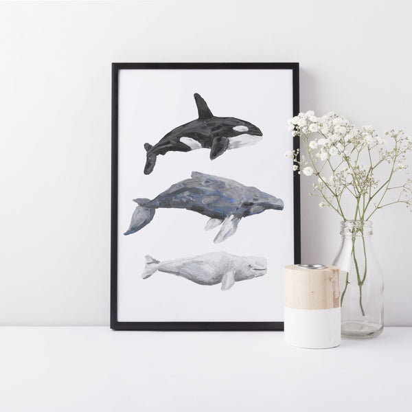 Whale Trio Watercolor Print - Jetty Home