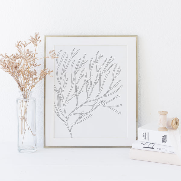 Modern Minimalist Seaweed Beach Decor Wall Art Print or Canvas - Jetty Home