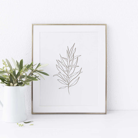 Eucalyptus Drawing Modern Minimalist Botanical Wall Art Print or Canvas - Jetty Home