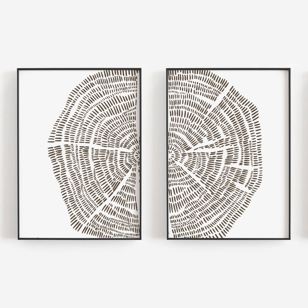 Tree Growth Rings Illustration Set of 2 Wall Art Print or Canvas - Jetty Home
