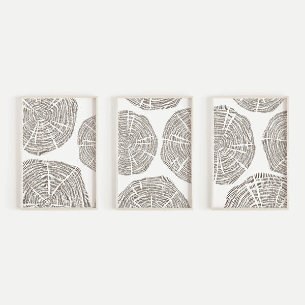 Tree Growth Rings Modern Abstract Triptych Set of 3 Wall Art Prints or Canvases - Jetty Home