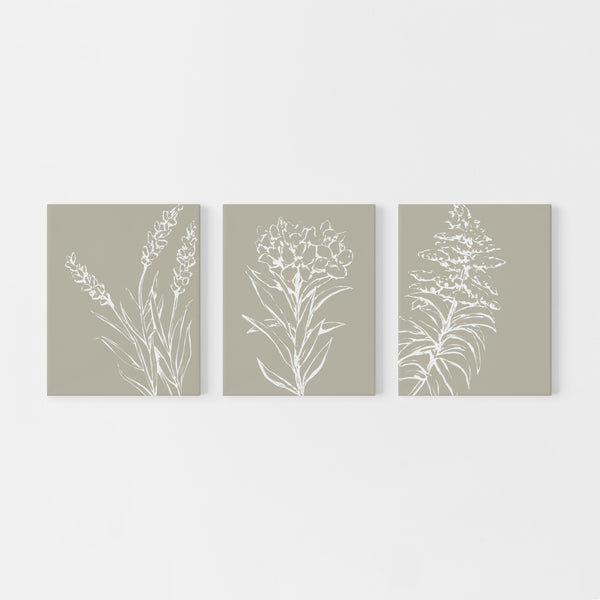 Tan and White Wild Flower Triptych Set of Three Wall Art Prints or Canvas - Jetty Home