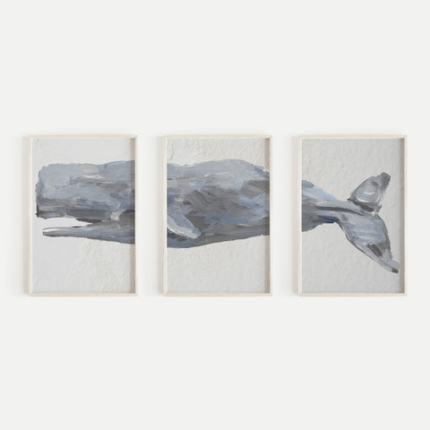 Sperm Whale Triptych Art Print or Canvas - Jetty Home