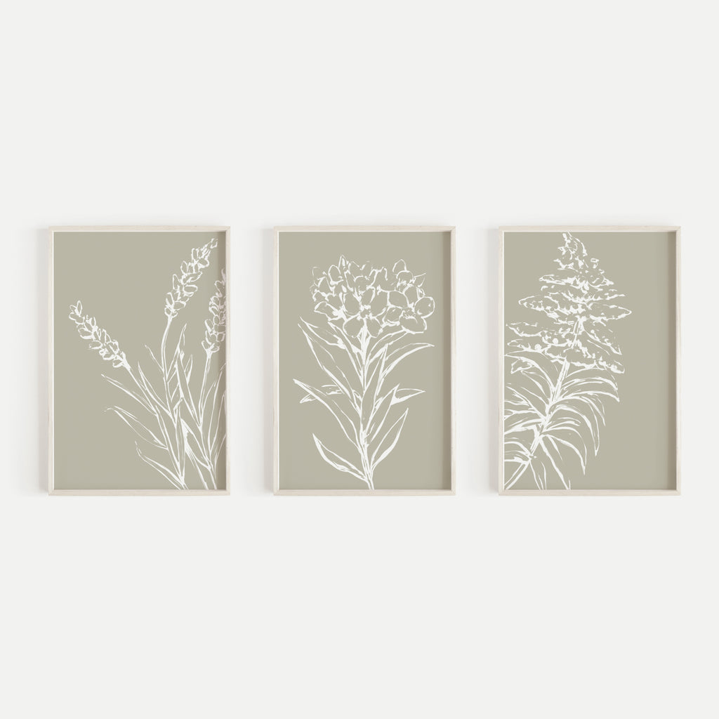 Tan And White Wild Flower Triptych Set Of Three Wall Art Prints Or Can Jetty Home