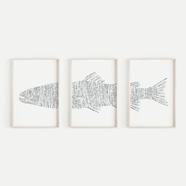 Modern Lake House Trout Fish Triptych Set of Three Wall Art Prints or Canvas - Jetty Home