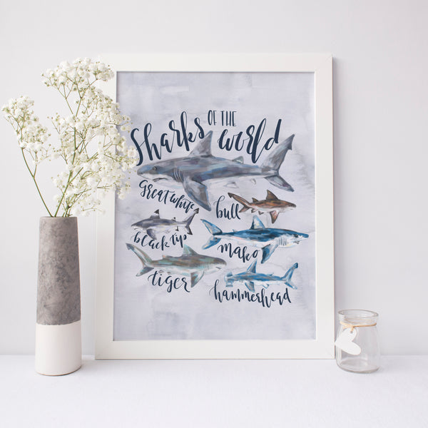 Shark of the World Species Art Print - Jetty Home