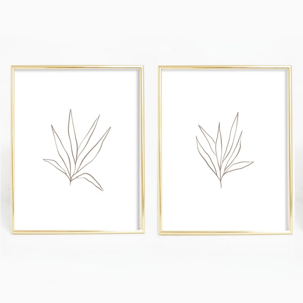Brown and White Botanical Plant Line Drawing Set of 2 Wall Art Print or Canvas - Jetty Home