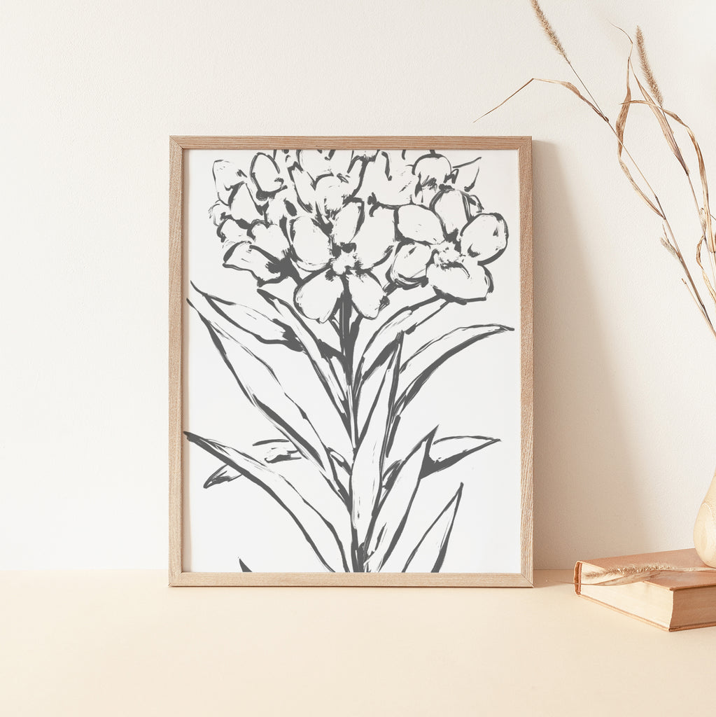 Oleander Modern Floral Minimalist Farmhouse Country Wall Art Print or Canvas - Jetty Home