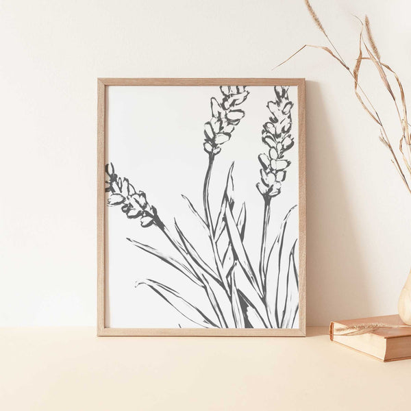 Lavender Modern Flower Minimalist Farmhouse Country Wall Art Print or Canvas - Jetty Home