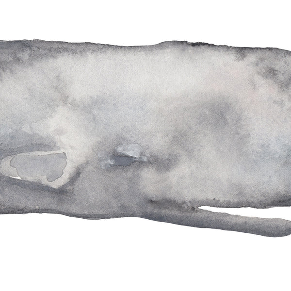 Watercolor Sperm Whale Painting Modern Coastal Wall Art Print or Canvas - Jetty Home