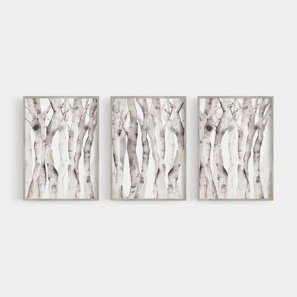 Modern Aspen Birch Tree Watercolor Triptych Wall Art Print or Canvas - Jetty Home