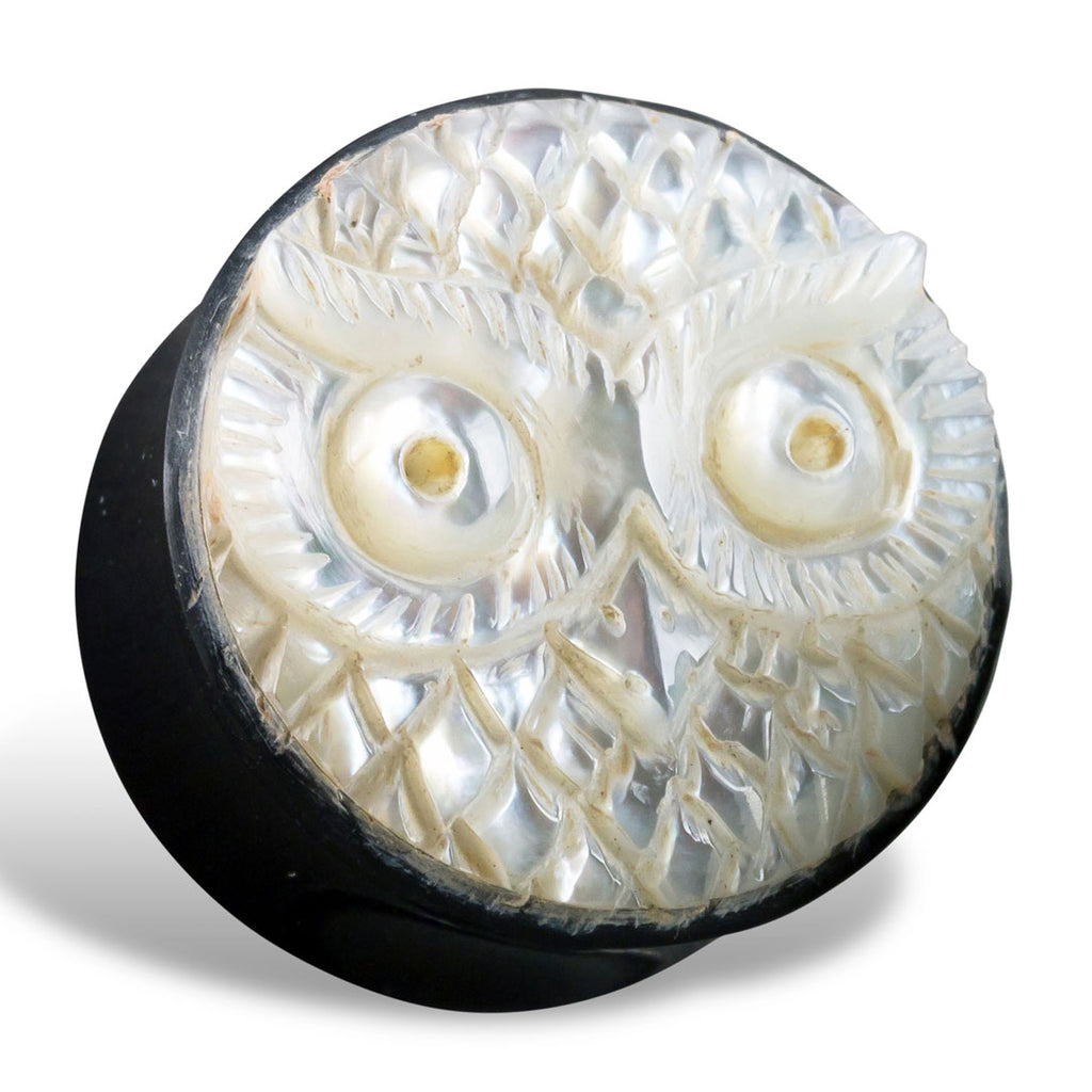 Owl Shell Plugs - Horn