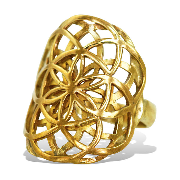 <span>RBR-002<span>: </span></span>Double Seed of Life Ring - Brass