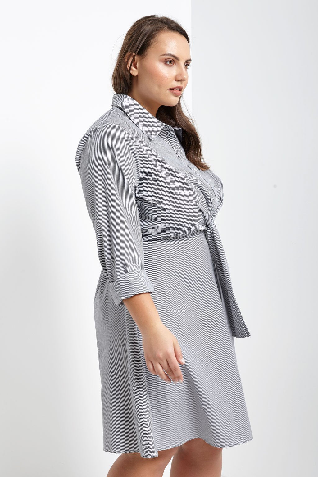 Poshsquare Plus Pinstripe Dress Plus Size