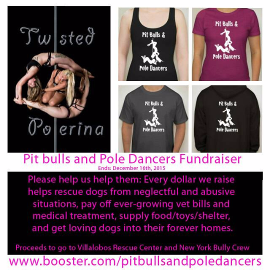Pit Bulls and Pole Dancers Fundraiser T- Men's