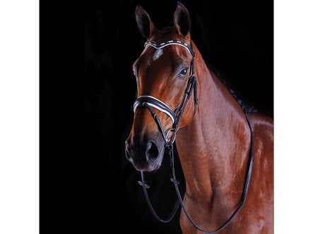 COLLEGIATE PEARL FLASH BRIDLE