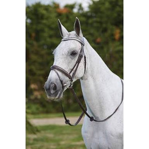 KINCADE Crystal checker Bridle