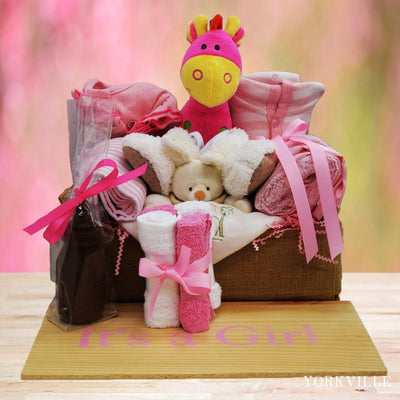 Baby Gift Baskets can be delivered anywhere in toronto same day. this baby gift basket has collection of baby products